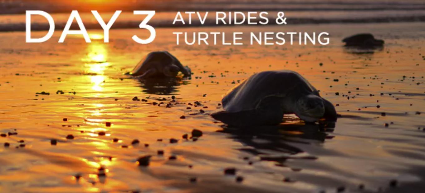 Day 3: ATV Rides & Turtle Nesting